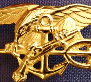 US NAVY SEALS' SPECIAL FORCES WARFARE SELECTION BADGE